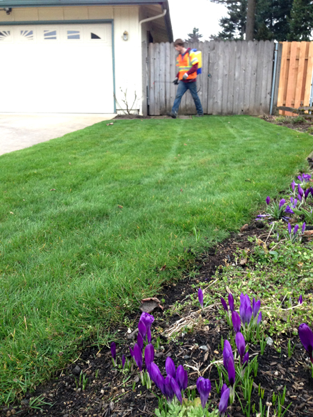 Residential Maintanence Pagel S Landscape Maintenance In
